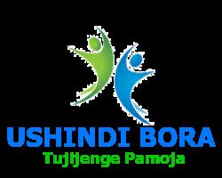 Ushindi Bora | Microfinance | Mobile Loans | Investments